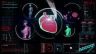Businesswoman touching digital screen, scanning blood vessel, lymphatic, circulatory system video