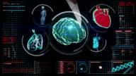 Businesswoman touching digital screen, Scanning brain, heart, lungs, internal organs video
