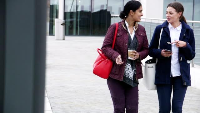Businesswomen Commuting To Work video