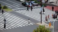 Busy big city street people on zebra crossing video