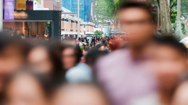 Busy Orchard Road scene video