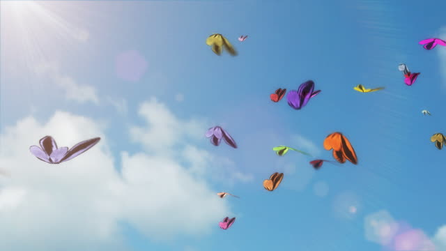 Butterflies video