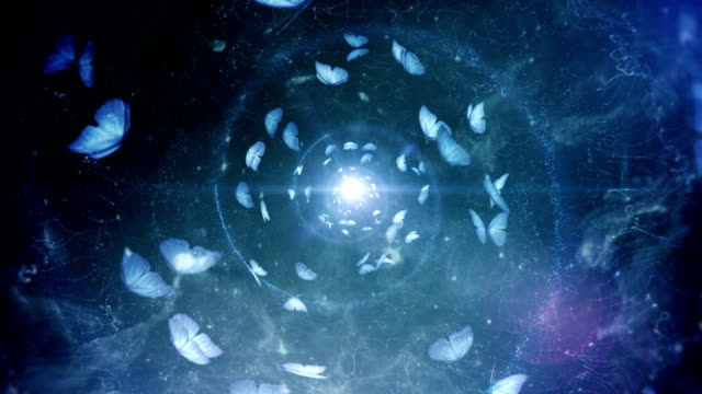 Butterfly spiral (blue, centered) - Loop video
