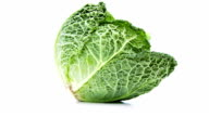 cabbage isolated on white background – loopable file video
