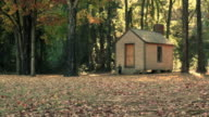 Cabin In Woods video