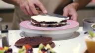 Cake Decorating video