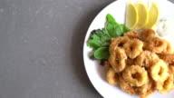 calamari video