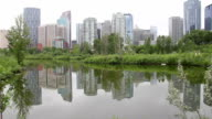 calgary skyline reflection day video