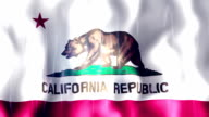 California State Flag Animation video