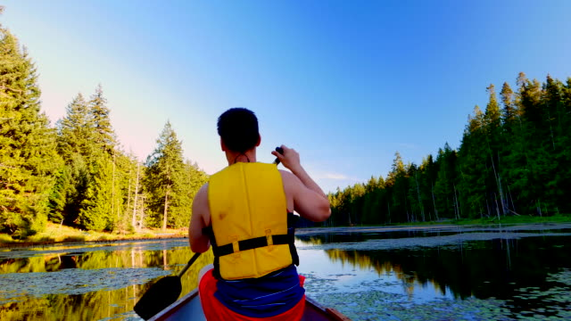 Calm Lake Paddle on Summer Day, Camera Pan video