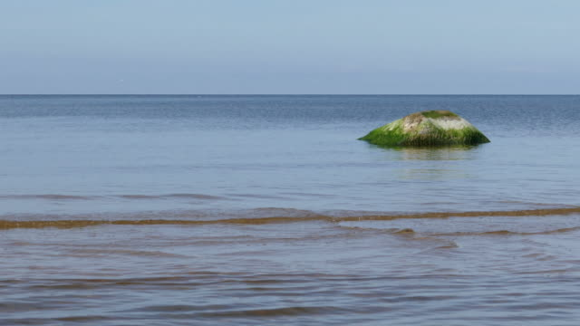 Calm seascape with stones video