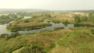 Calm swampy river in forest, summer daytime meadow. Aerial shot with fog at horizon video