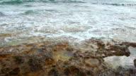 Calm waves splash on rocky shore, stony beach, beautiful nature, video