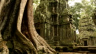 Cambodian UNESCO World Heritage Site Ta Prohm temple video HD video
