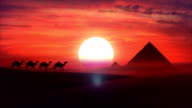 Camel train travels across a desert in the sunset. HD video