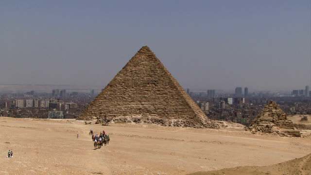 Camels with people in distance, pyramid background video
