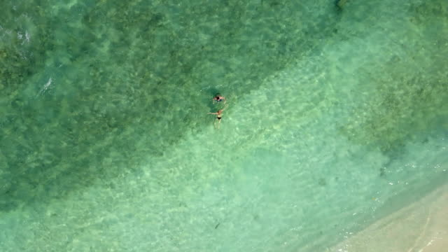 Camera is ascending above couple swimming in Indian ocean on an empty beach , view from above. Aerial footage of two lovers on honeymoon bathing and kissing in blue emerald sea video