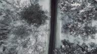 camera landing across a snow trees video