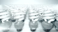 Camera movement over group of energy saving lightbulbs (bright) video