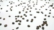 camera movements along coffee beans video
