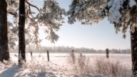 Camera moves from left to right and takes a beautiful winter landscape video