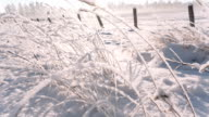 Camera moves from the bottom up taking a large field dotted with snow video