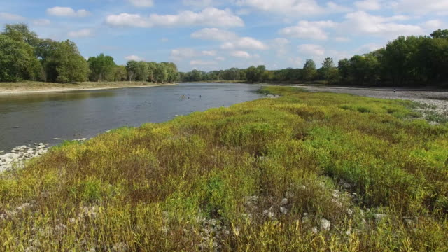 Camera moving over small island in Maumee River, green plants and rocks video