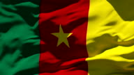 Cameroon Flag video