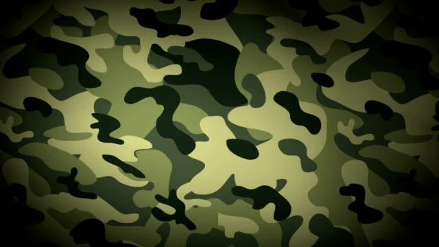 camouflage flag video