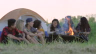 Campfire at Sunset with Friends video