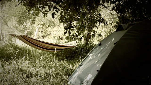 Camping equipment: touristic Tent and Hammock between the trees video