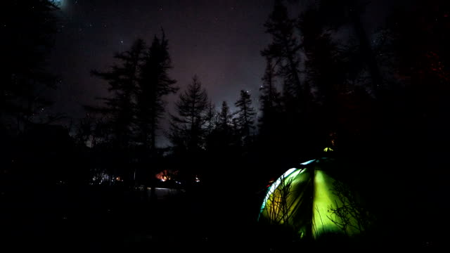 Camping Night Sky Timelapse in Forest. video