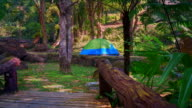 Camping Tent In  Forest video