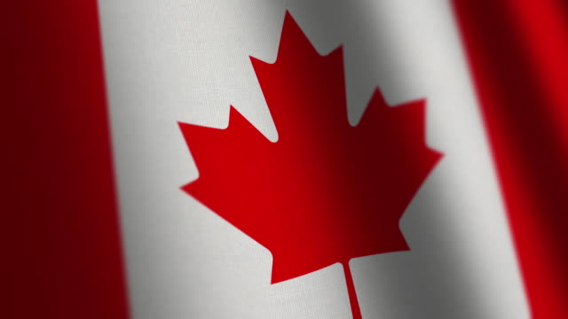 Canada flag - loop. video