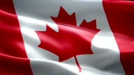 Canada flag. (New surge effect) video