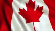 Canada Flag Video Loop - 4K video
