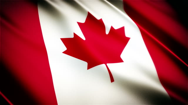 Canada realistic national flag seamless looped waving animation video