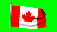 3D Canadian flag animation on the green screen HD video