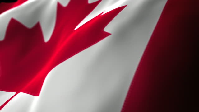 Canadian Flag Close Up - Looping video