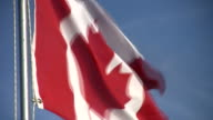 HD: Canadian Flag Closeup video