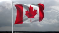 Canadian Flag HD 1080, PAL, NTSC, alpha included, looping video