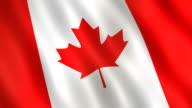 Canadian Flag (Loop Video) video