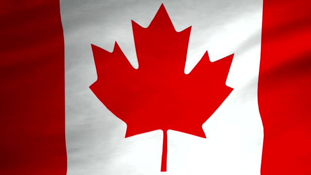 Canadian Flag Video video