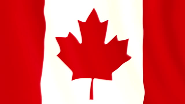 Canadian flag waving animation video