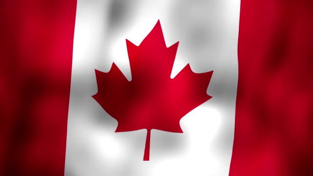 Canadian flag waving in the wind video