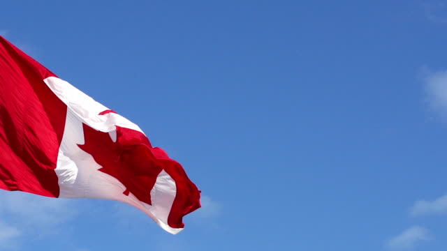 Canadian flag waving in wind against blue sky video