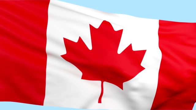 Canadian flag waving loopable video