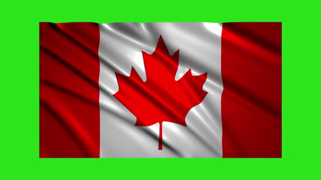 Canadian flag waving,loopable on green screen video
