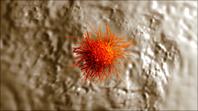 cancer cell with high details video
