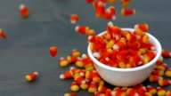 candy corn for halloween falling into a white bowl with copy space video